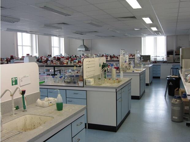 青岛二中 红岛 百度 实验室